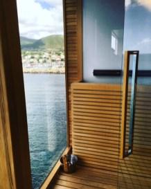 Viking Cruises Viking Star cruise ship sauna view