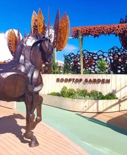 celebrity cruises edge cruise ship rooftop garden