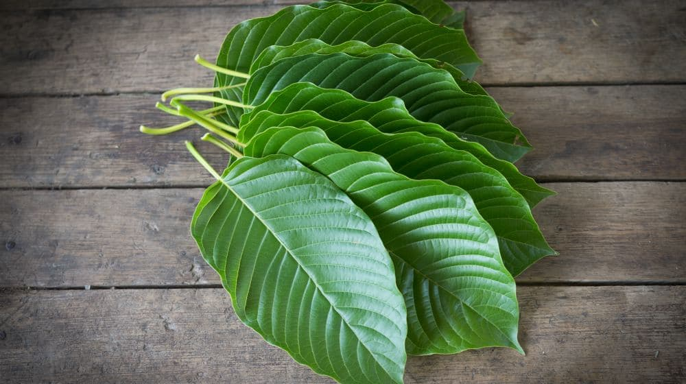 Feature | Best Kratom for Pain Relief