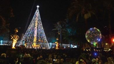 árbol Navidad Murcia