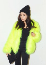 Style Nanda. http://en.stylenanda.com/product/Chunky-Neon-Fur---Jacket/SFSELFAA0029678/?main_cate_no=AD000000&display_group=1