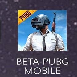 PUBG 1.2 Beta Apk
