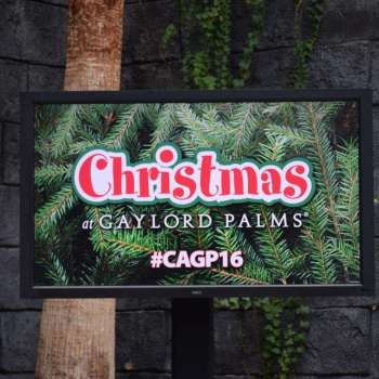 Christmas at Gaylord Palms 2016