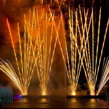 SeaWorld Orlando New Year's Eve