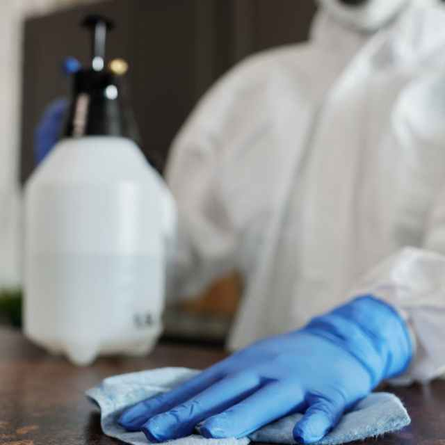 person wearing blue latex gloves and face mask
