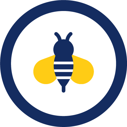 Insect sting allergy