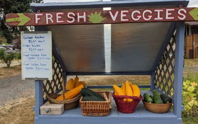 Top 6 Saanich Peninsula Farm Stands