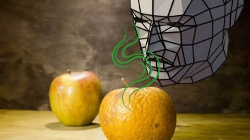 Discerning by smell whether an apple is fresh or rotten is a metaphor for spiritual intuition