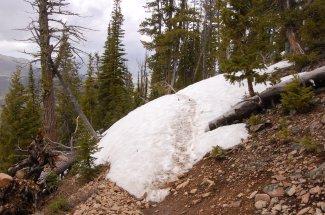 Snowdrift on the trail