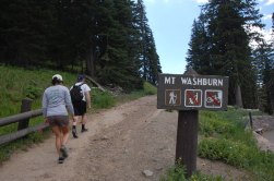 Hiking only from this trailhead. You may bike to Mt. Washburn from the Chittenden Road trailhead.