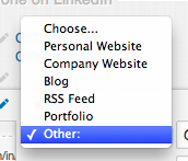 Options to describe your website on LinkedIn
