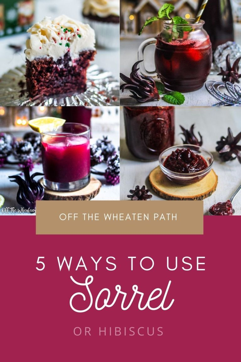 ways to use sorrel or hibiscus