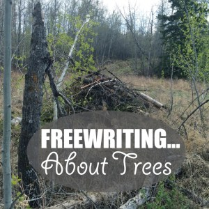 Freewriting… About Trees