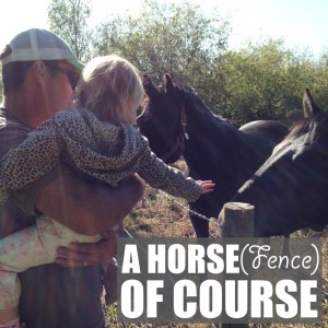 A Horse (Fence), Of Course