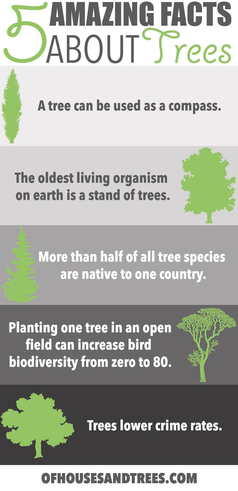 Amazing Facts About Trees   Five amazing facts about trees! Did you know a tree can be used as a compass, fight crime and increase bird biodiversity from zero to 80 species?