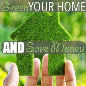 Green Your Home AND Save Money
