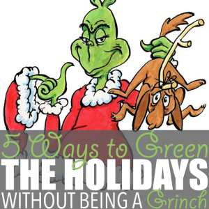 5 Ways to Green the Holidays Without Being a Grinch
