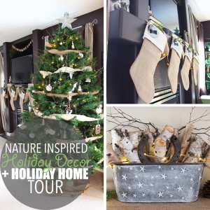 Nature Inspired Holiday Decor by Of Houses and Trees | Nature inspired holiday decor is an eco-friendly way to create a feeling of calm beauty in your home. It's like walking through the woods on a winter day.