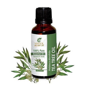 Tea tree oil essential oil from Sheer Essence. Available through Etsy.