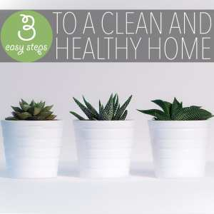 Whether you want to protect your family from chemicals or to do your part greening our planet - these are both great reasons to create a healthy home!