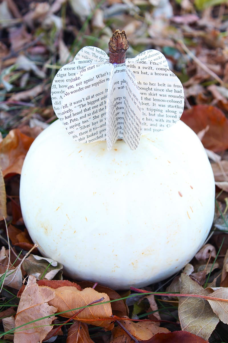 Fall is the time of year for DIY pumpkin crafts! If you want to keep it simple, this project is for you. Make a DIY paper pumpkin from old book pages and display with pride!
