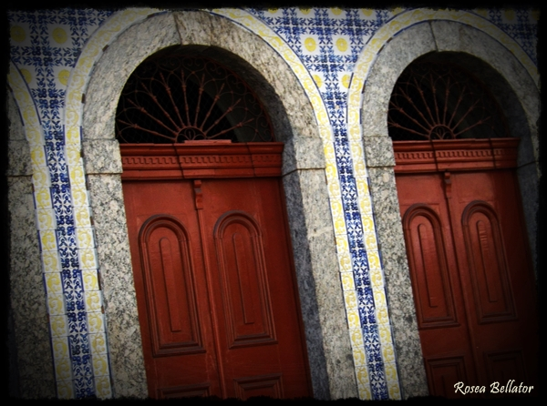 Foto: Rosea Bellator. - Pense na vida como se fosse um infinito corredor cheio de portas. Cada porta leva a um caminho. Você acha mesmo que todos devem ter uma única opção com tantos caminhos para se descobrir?