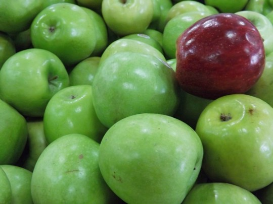 Você não vai resistir a compota de maçã verde! Mas se quiser pode fazer com a vermelha mesmo! Foto: Rosea Bellator.