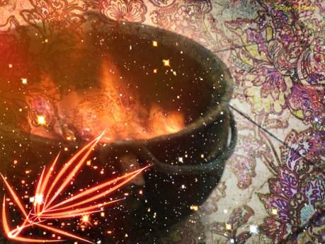 mexendo o fogo no caldeirão - foto: Rosea Bellator