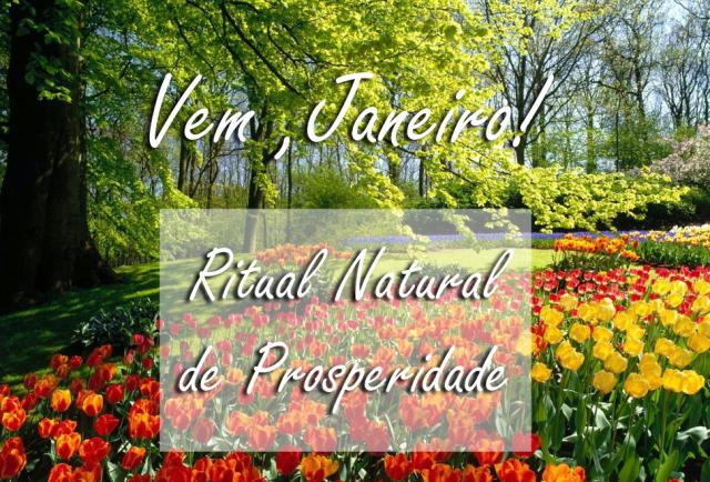 vem janeiro - ritual natural de prosperidade - ritual natural - ritual natural é um ritual onde somente se invocam as forças da natureza