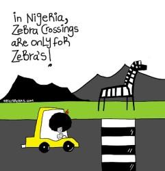 In #Nigeria Zebra Crossings Are For Only Zebra's Crossing