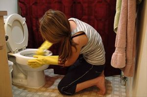 When guest are coming over, the toilet should be one of the first things you clean.