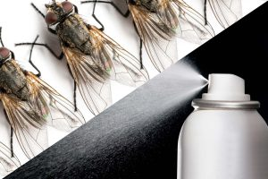 Use hairspray to get rid of house flies and other pests.