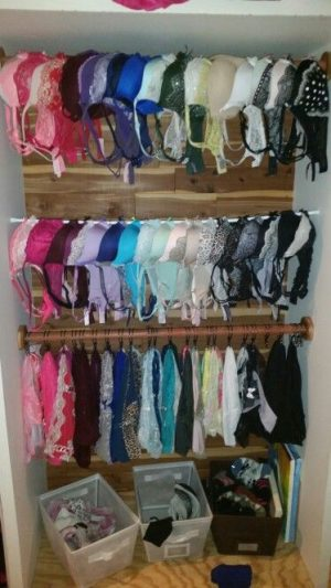 Use a couple of shower rods to organize all of your bras in your closet. Repin!
