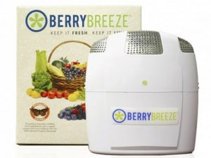 Berry Breeze e1508869803830 - 19 Kitchen Gadgets That'll Make You Look Like a Culinary Genius