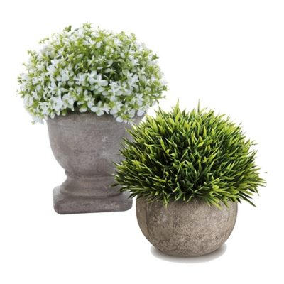Mini potted plants are a must-have item for your farmhouse themed tiered tray.