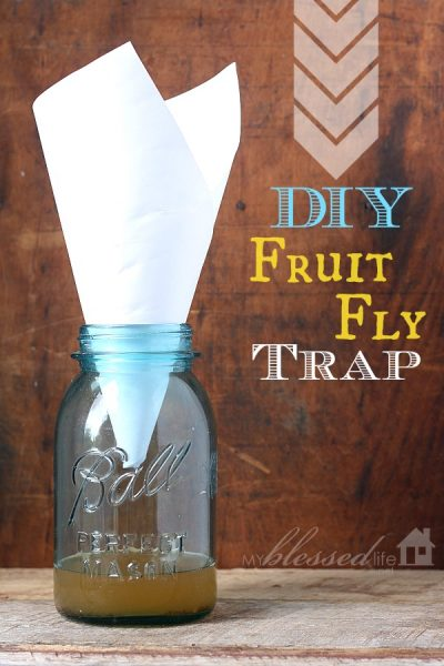 Keep a fruit fly and gnat trap near eating areas to attract, trap and contain gnats during outdoor parties.
