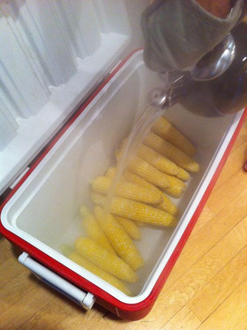 Cook large quantities of corn in a cooler by pouring boiling water over them. #summer #bbq #hacks