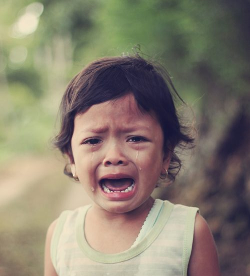Learn how to stop toddler temper tantrums the gentle and easy way.   Stop Toddler Temper Tantrums