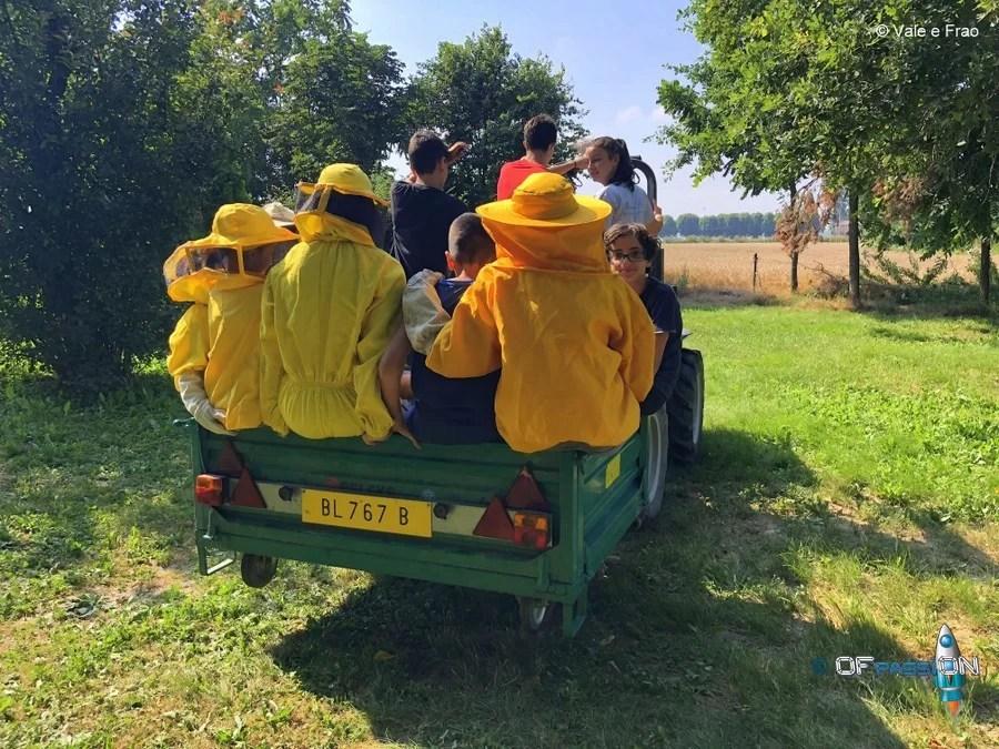 summer camp robotica estate tech e non solo valeria francesco