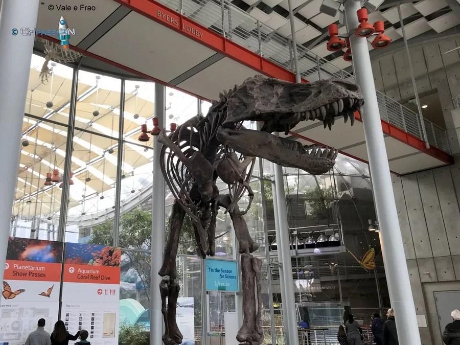 animali preistorici museo scienza california valeria cagnina francesco baldassarre ofpassion