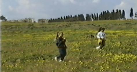 השדה המובס