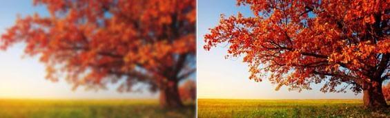 antes e depois da cirurgia de catarata