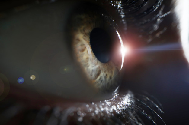 """Information about Glaucoma """"The Sneak Thief of Sight"""" and Its Treatments"""