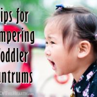 Tips for Tempering Toddler Tantrums