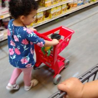7 Tips for Grocery Shopping with Young Children