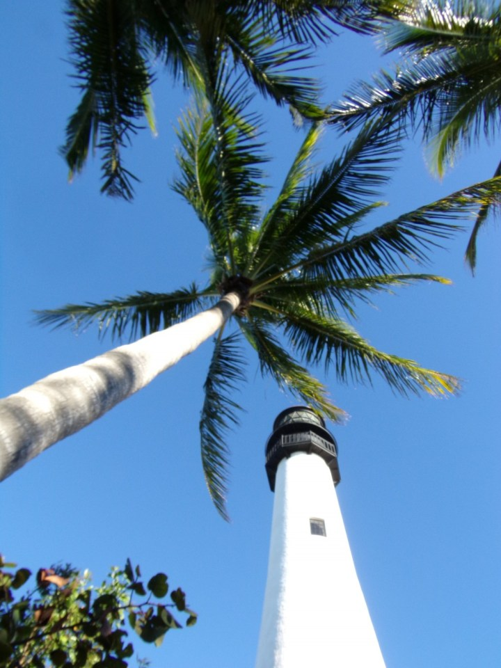 Cape Florida Lighthouse with Palms