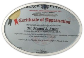 Certification of Appreciation (Black Python Martial Arts)