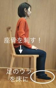 座位の写真