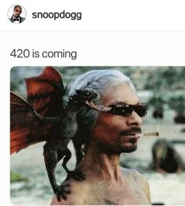 SNOOP DOG'S PICTURE CRAZE FOR THE WEEK: Blazing, Weird, Modest or Something else?