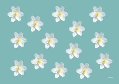 43. Green - flowers
